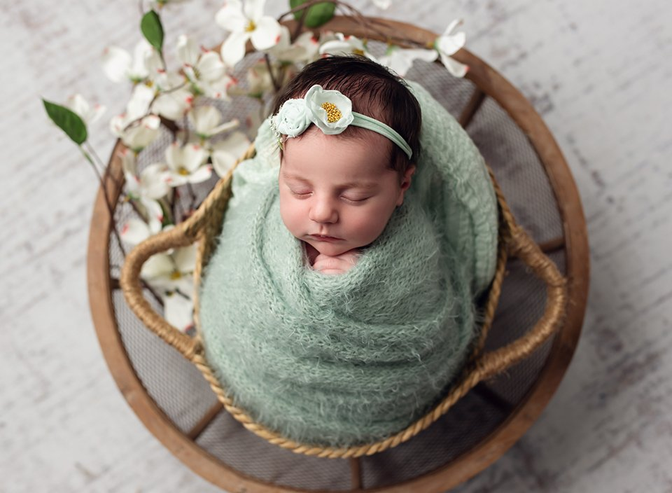 twinsburg oh newborn photographer