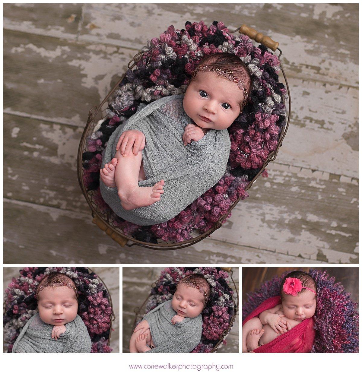 Brunswick Ohio Newborn Photographer