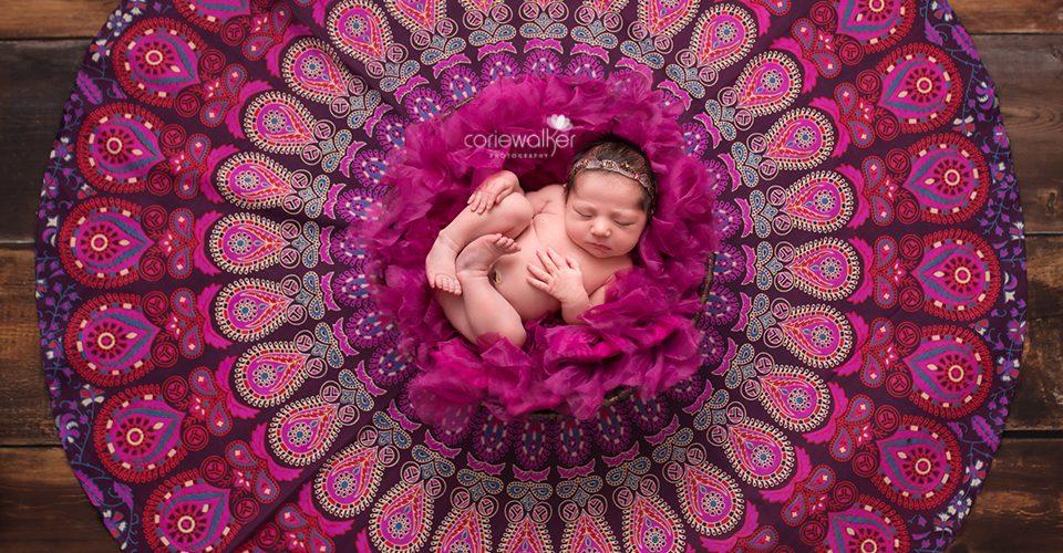 Newborn Girl Portrait Art