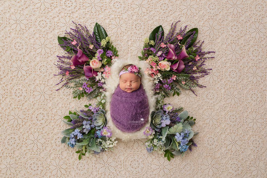 butterfly-newborn-composite