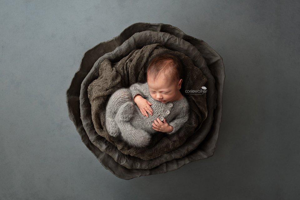 newborn boy photo
