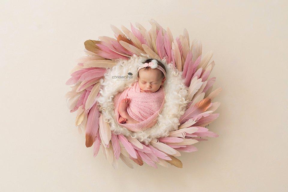 newborn fairy tale pink feathers