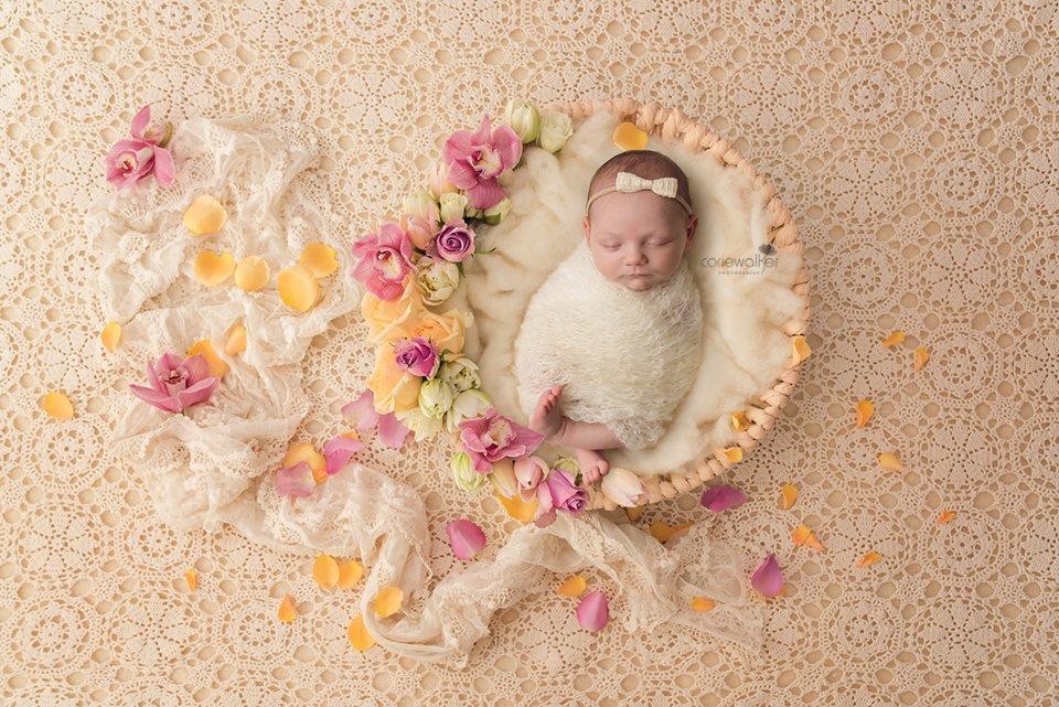Newborn Photographer Cleveland