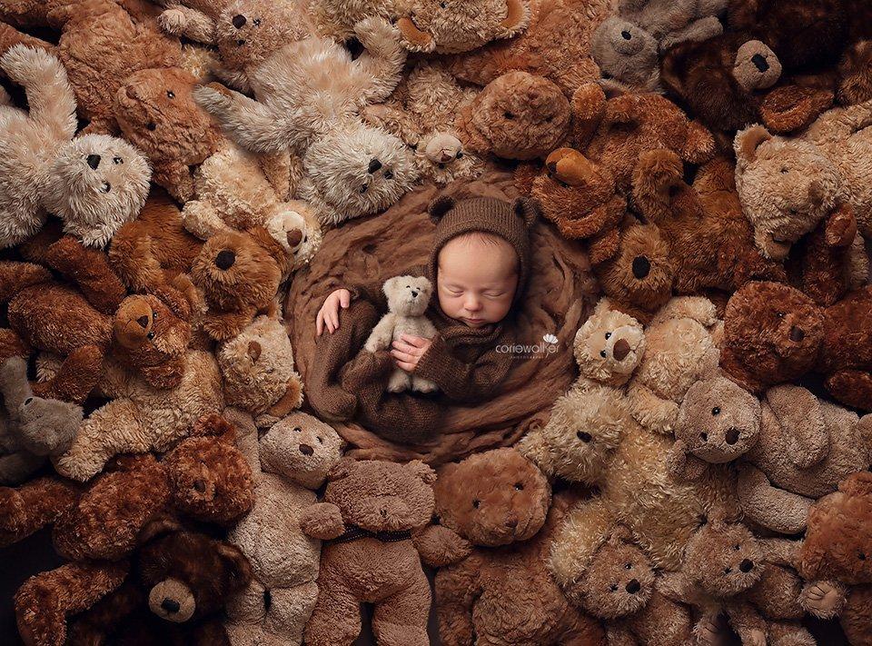 teddy bear newborn baby